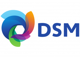 Org overview DSM
