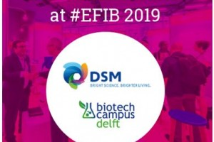 Explore and connect at EFIB 2019